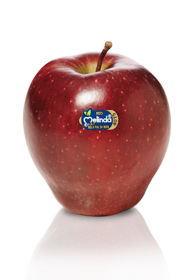 MELE RED DELICIOUS MEL.DOP 75/80 750g 1^
